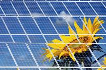 Viele Photovoltaik-Module
